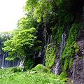 Photos: 白糸の滝 2011.5.8-2