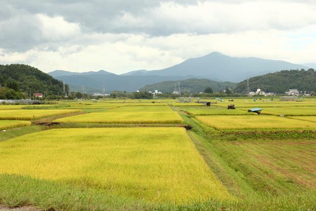 Photos: 遠野の田園風景