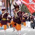 写真: 多摩っこ_12 - 良い世さ来い2010 新横黒船祭