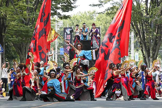 Photos: 銀輪舞隊_20 -  「彩夏祭」 関八州よさこいフェスタ 2011