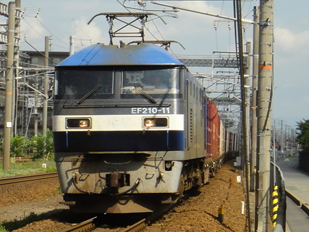 DSC00931