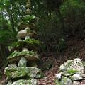 Photos: 瓜生羅漢石仏