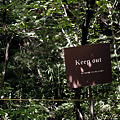 Photos: keep out