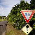 Photos: Road