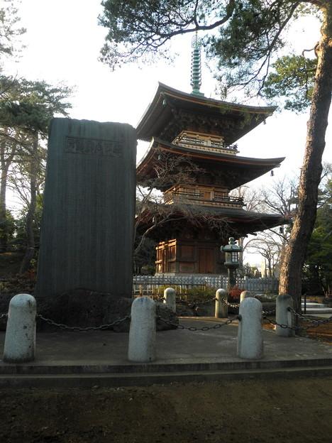 世田谷線:宮の坂駅界隈_豪徳寺-06三重塔b