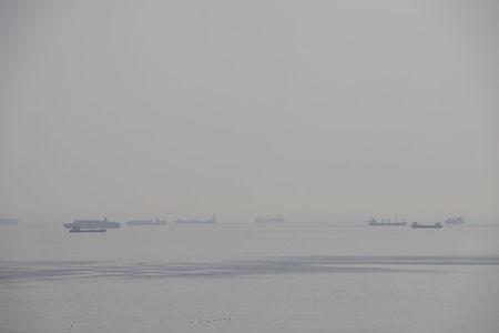 船が避難する伊勢湾