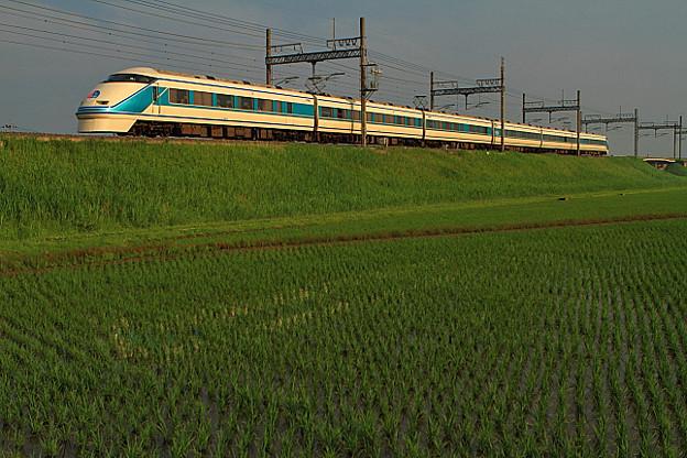 1125列車