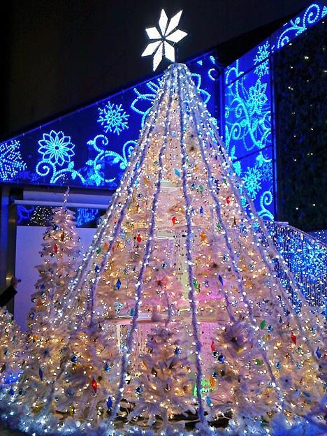 (´∇`)<Merry☆Christmas気分