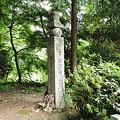 Photos: 高野山 町石道 百八十町石 2010年08月14日_DSC_0036