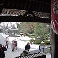 Photos: 2011年01月09日_DSC_0021