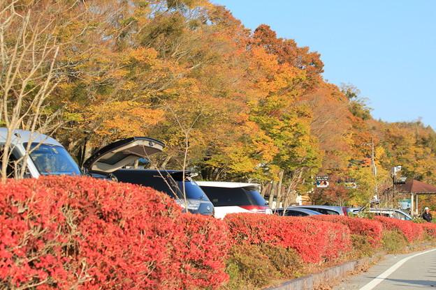 写真: 山中湖1