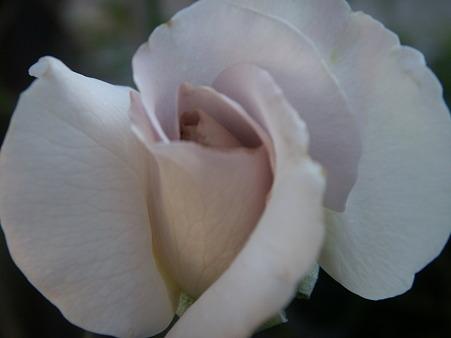 201010 010