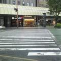写真: この横断歩道で良いお話が・・・