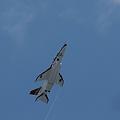 2010静岡ホビーショー T-4飛行展示