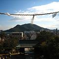 Photos: 沼名前神社 参道