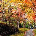 Photos: 箱根美術館 紅葉