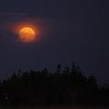Photos: Setting Moon version 1.0