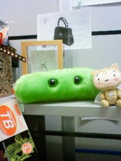 写真: APHA(アメリカの公衆衛生学会)のお土産で先生から結核菌ぬいぐるみいた...