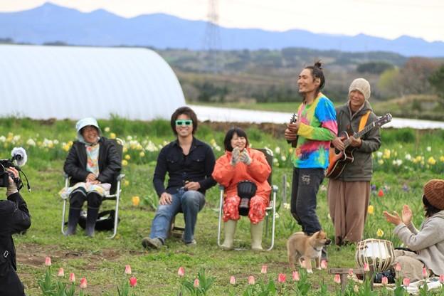 Photos: チューリップ園にて