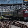 Photos: EF81 140+E231系 サハE231-600・4600配給回送