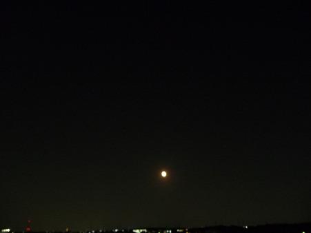100727-お月さん (1)
