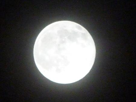 101023-お月さん (10)