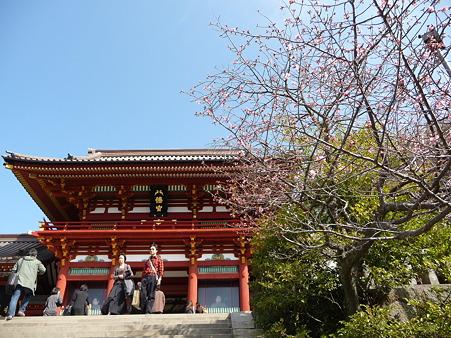 110225-鶴岡八幡宮 (39)