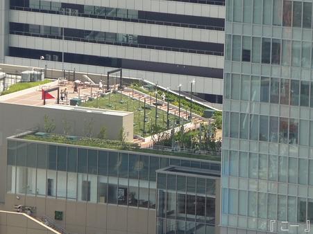 110829-空中庭園 (25)