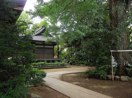 境内-奥澤神社 (世田谷区奥沢)