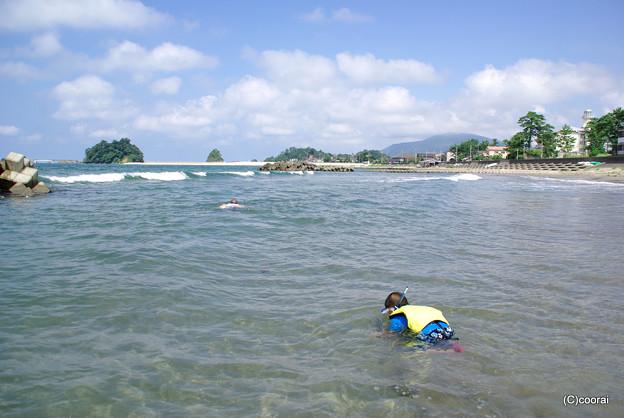 写真: 若狭湾