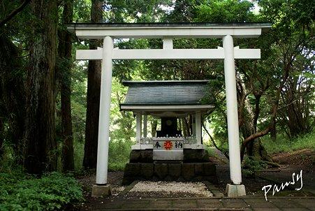 白龍神社・・九頭龍の森・・2