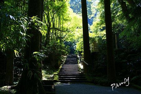 長月の東慶寺・・9