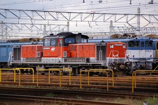 JR貨物 DD51-1803号機 新更新色 愛知