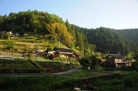 DSC_simoawasiroharu0019