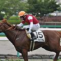 Photos: 殿下タキオン(Argentum)
