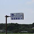 写真: 100516-97道の駅「きんぽう木花館」