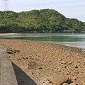 写真: 100517-60天草の海2