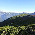 写真: 100722-66蝶ヶ岳山頂付近から(3/3)