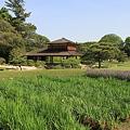 Photos: 110515-19岡山後楽園・流店