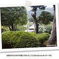 写真: kizuna02