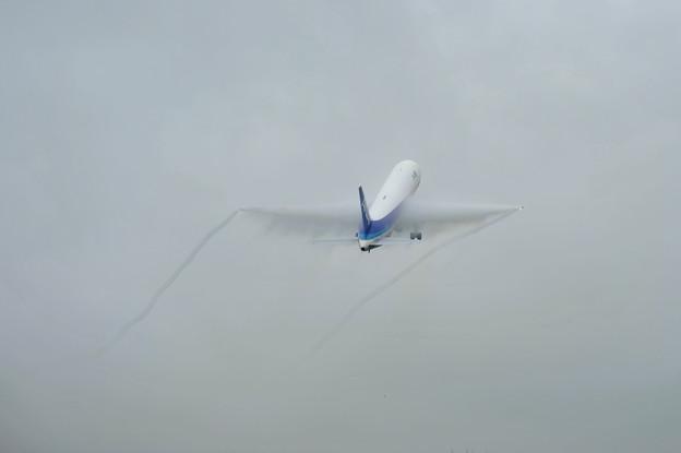 高松空港雨 B767
