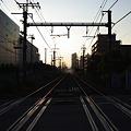 写真: 夏の日