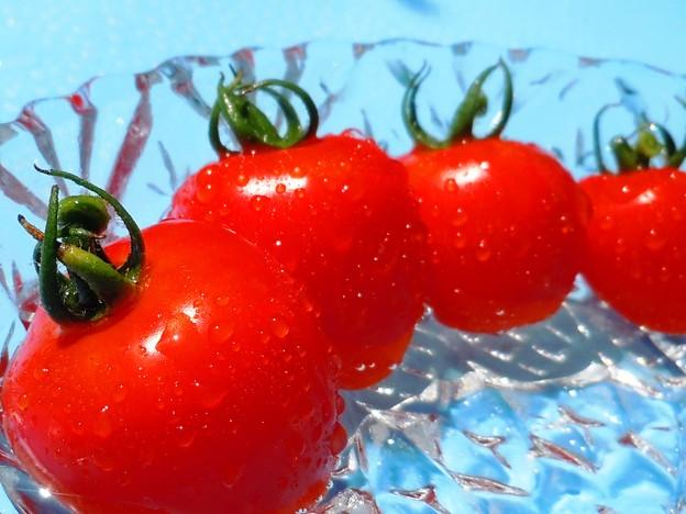 ハート型トマトベリー初収穫
