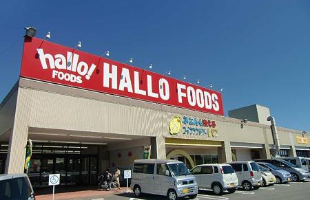 hallo foods-230924-3