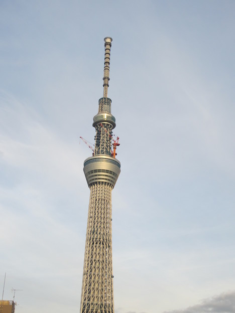 向島線より (8)
