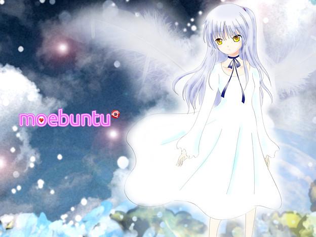 写真: Angel_1600x1200_logo