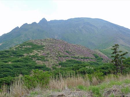 仙酔峡(1)