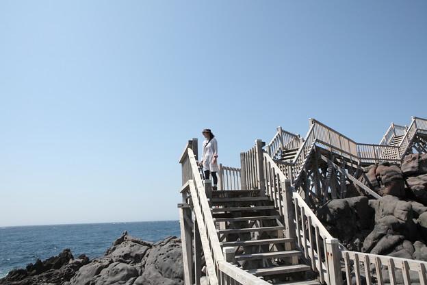 写真: IMG_6921神津島__天上山登山と島巡り