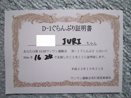 20101031 008