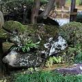 Photos: 竜石